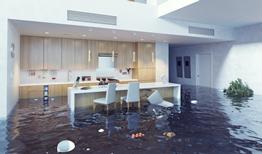 Que faire en cas de dégâts des eaux ?